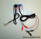 car head lamp wire harness